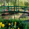 Японский сад Клода Моне