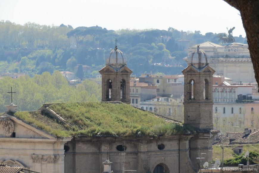 Апрель- зеленеет даже трава на крыше.