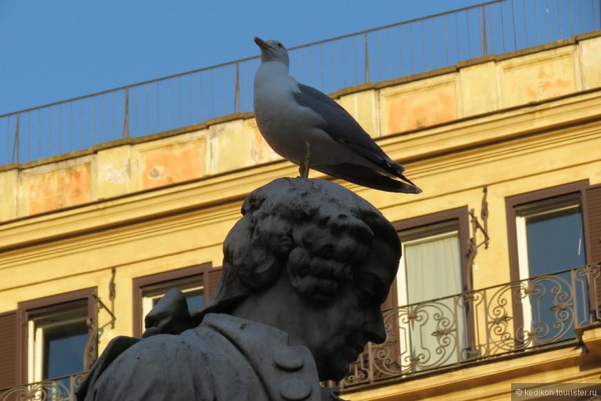 Птицам в Риме раздолье - есть где посидеть и постоять.