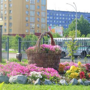 огромная корзинка с цветами