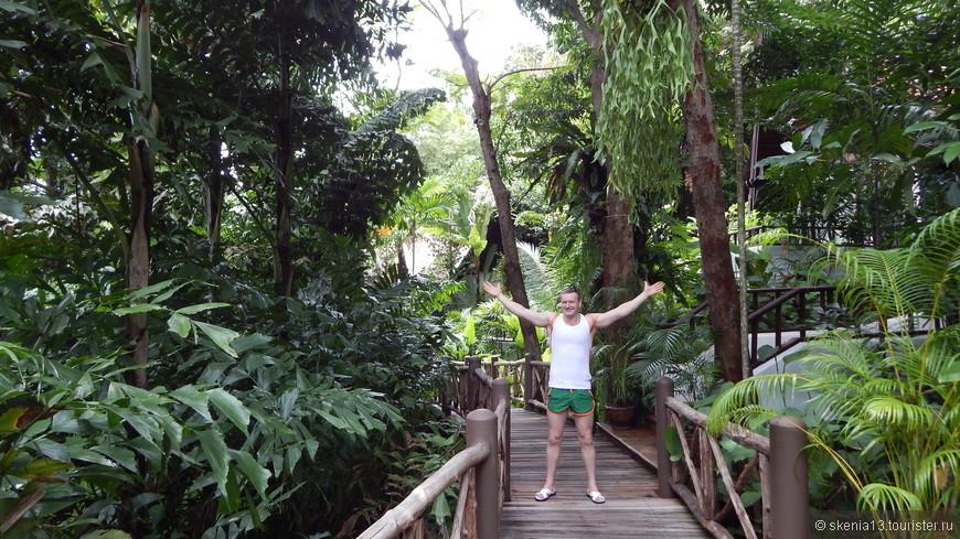 джунгли отеля Marina Phuket Resort, 4*