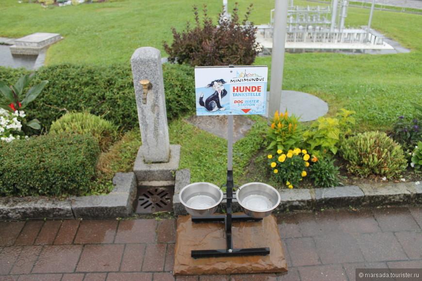 Это не экспонат! Это если вы с собакой, и она захотела пить! А? Каково? У нас  на улицах для людей питьевой воды нет, не то что для собак!