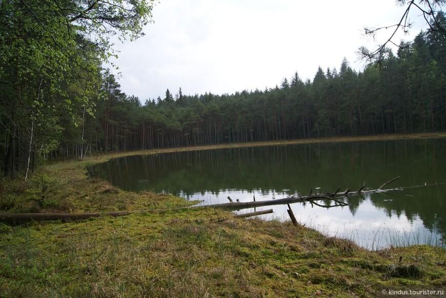 Озеро Глухое находится, как и положено, в самой глуши.