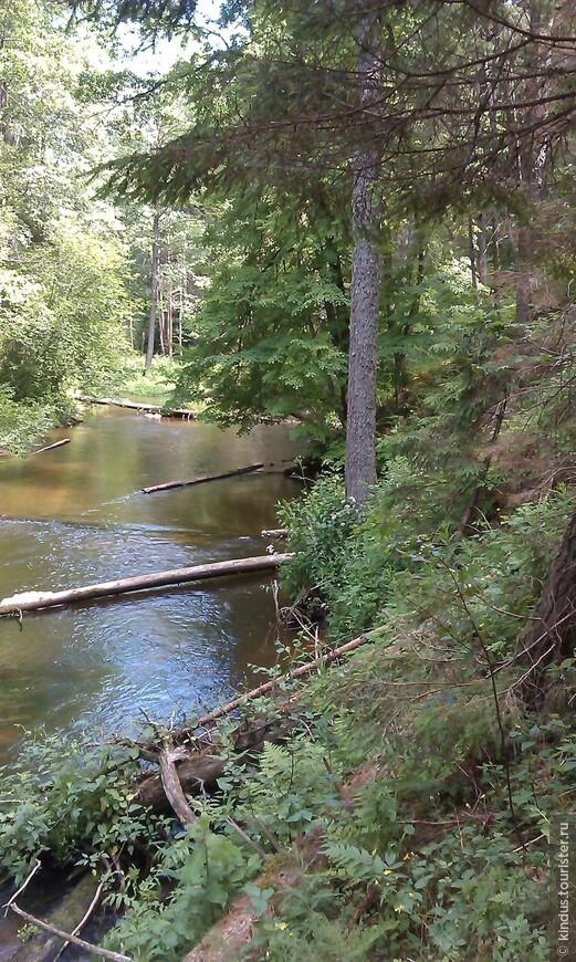 Среди крутых озовых гряд пробивает себе путь река Страча.
