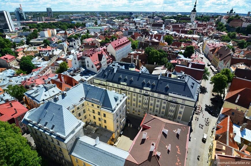 Вид с Церкви Олевисте. Церковь в нынешнем виде имеет высоту 123,7 метров. Согласно постановлению городского правительства Таллина, строящиеся в центре города небоскребы не могут быть выше церкви Святого Олафа.