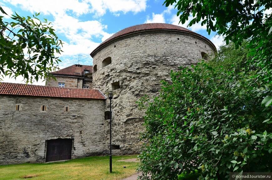 Толстая Маргарита. Орудийную башню со 155 бойницами построили в начале XVI века перед Большими морскими воротами. Своё название она получила за внушительные размеры — 25 метров в диаметре и 20 метров в высоту. Сегодняшнее название башня получила в 1842 году, а до этого её называли просто Новой башней. С 1830 года башню стали использовать в качестве тюрьмы. Пристройку сделали в 1884—1885 годах (первое изначально предназначенное для тюрьмы здание в Таллине). В марте 1917 года башню сожгли. В 1930 году в пустующей башне устроили Музей истории.