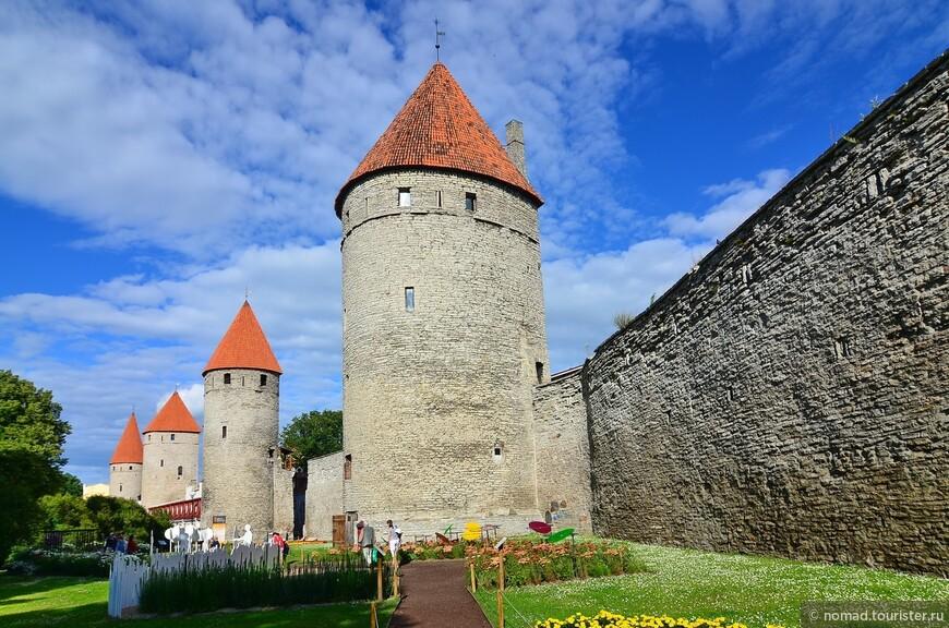 Башня Кёисмяэ на переднем плане. Башня Кёисмяэ (Башня верёвочной горы) находится в западной части крепостной стены в промежутке между башнями Лоевеншеде и Плате. Башня была построена в 1360 году и до наших дней дошла очень хорошо сохранившейся.  Своё название башня получила от находящейся неподалёку от неё мастерской по плетению верёвок. Возведённая в 1360 году башня была трёхэтажной и 13,3 метра в высоту. Нижний этаж был складским, два верхних этажа были оборонительными. С проходом на крепостной стене башня соединялась деревянным балконом. 1436-1437 внешние стены башни были утолщены а также увеличена высота. К 16 метровой высоте добавлялся ещё деревянный оборонительный этаж. Нынешнюю высоту в 26,5 метра башня получила в 1520 году, когда добавили ещё два оборонительных этажа. Первые три этажа стали носить функцию складских помещений.