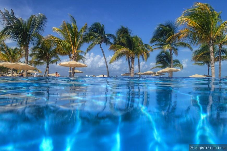 В Канкуне очень стройные пальмы!