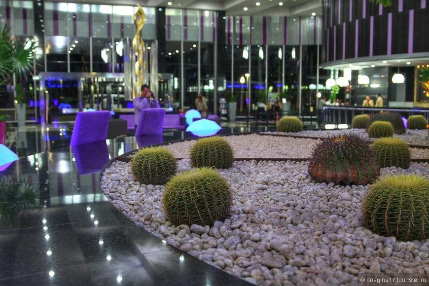 В Канкуне кактусы - экзотика. Все для создания атмосферы Мексики!