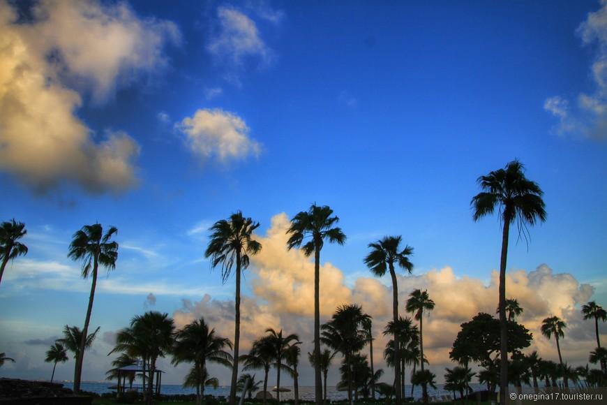 Море, пальмы, облака...