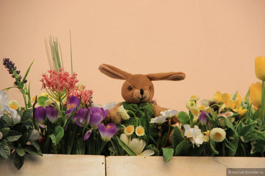 ...зайцы, прячущиеся в клумбах,