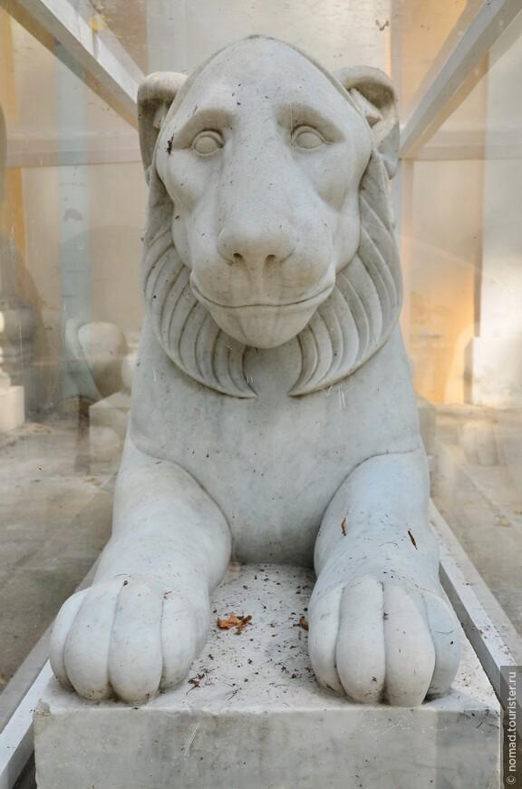 Лев около Большого Дворца