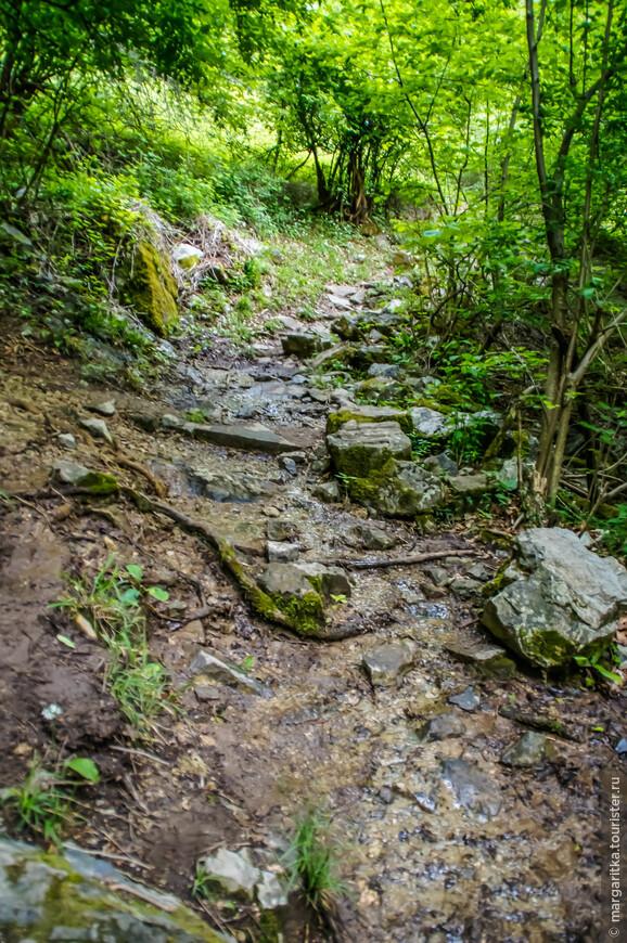 местами, струящиеся сверху ручейки, не имея русла, растекаются по всей тропе