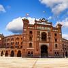 Обзорно + пешеходная экскурсия по Мадриду. Гид в Мадриде