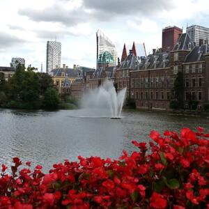 Денек в Гааге