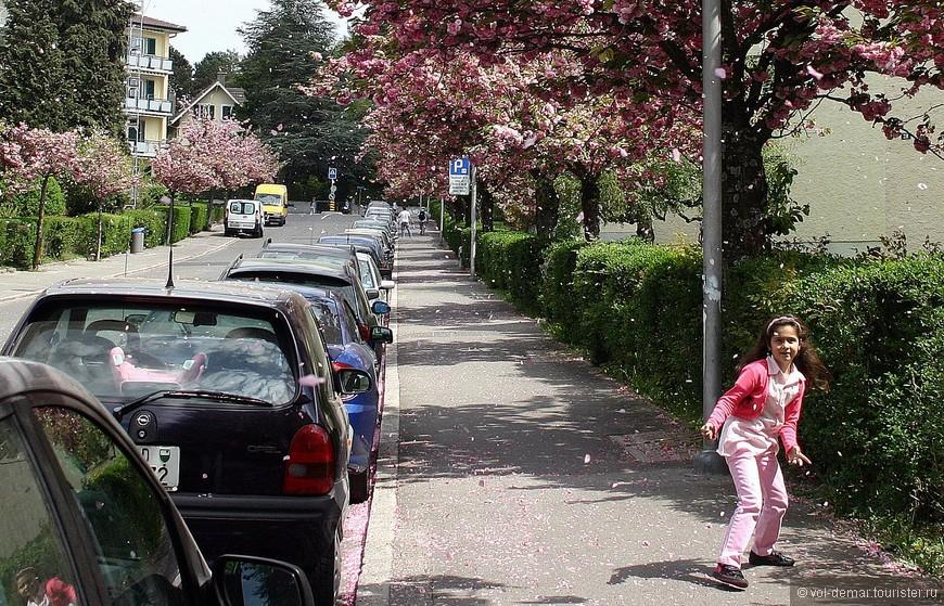 Маленькая улочка в городе Renens