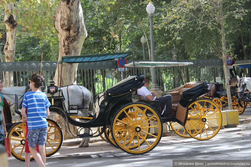 Экипаж лошади в Севилье