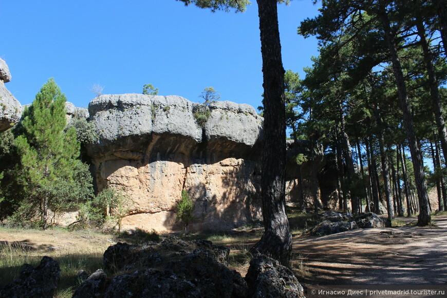"""В парке  """"Заколдованный город"""" большинство значимых объектов парка есть таблички с названием той или иной каменной скульптуры."""