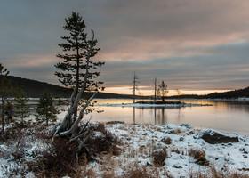 Лапландия зимой — это не только Санта!
