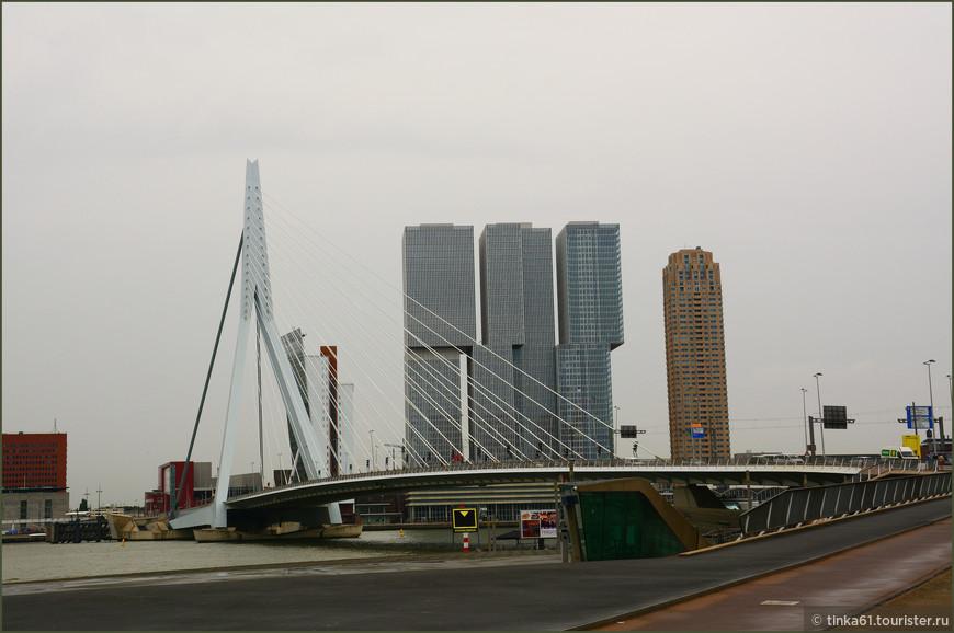 Мост Эразма (Erasmusbrug) — вантовый мост через реку Маас в центре Роттердама, первый со стороны моря. Благодаря своейвоздушной конструкции и узнаваемым очертаниям быстро стал одной из визитных карточек города и получил прозвище «Лебедь-мост».