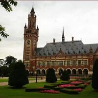 Главный символ Гааги - Дворец мира построен в стиле неоренессанс в период с 1907 по 1913 год. В настоящее время здание служит местом заседания Международного трибунала, резиденцией Гаагской Академии Международного Права, а также в нем расположена большая библиотеки международного права.