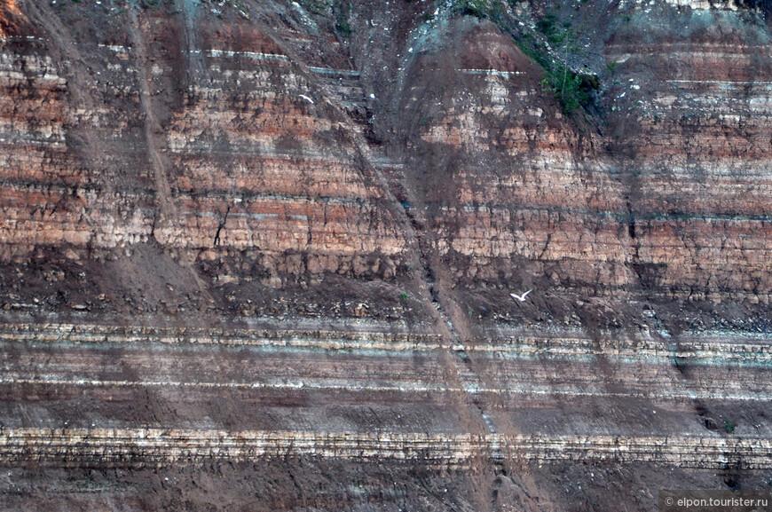 Сухонские скалы - Опоки