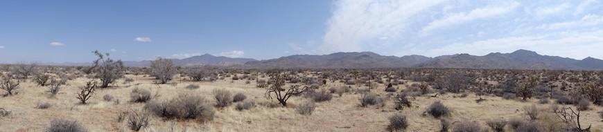 Вот такая Аризона.