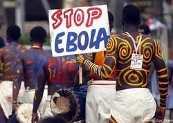 Ученые назвали дату прихода вируса Эбола в Россию