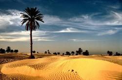 Российским туристам в Северной Африке не угрожает вирус Эбола