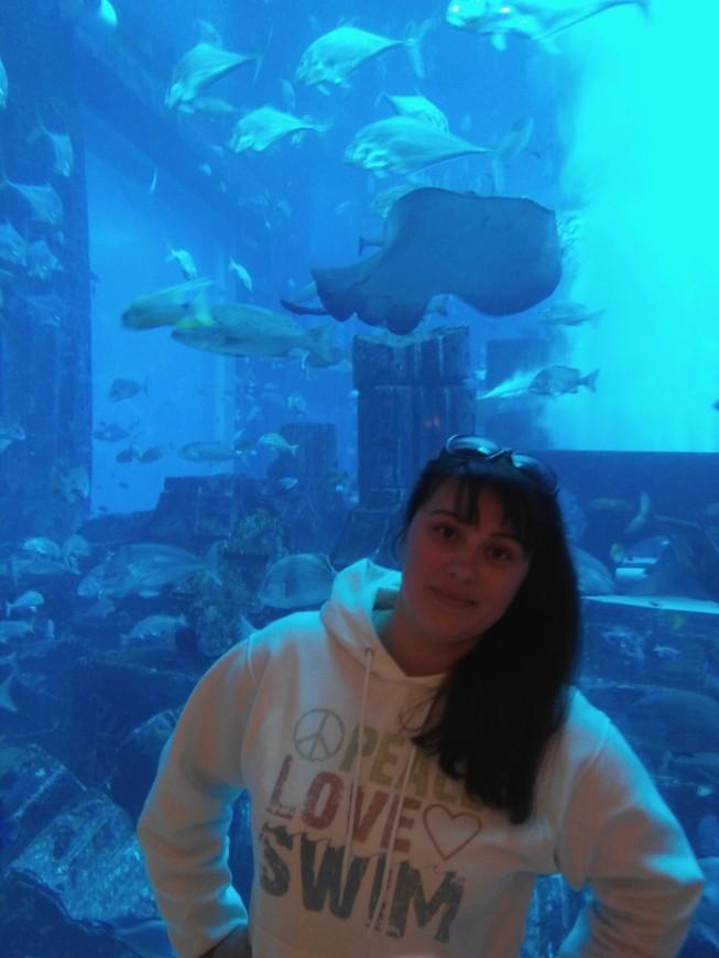 Огромный аквариум, собравший в себе почти всех жителей подводного мира
