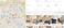 Бронирование на Airbnb: от скромных апартаментов до шикарных вилл