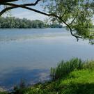 Озеро Тиса