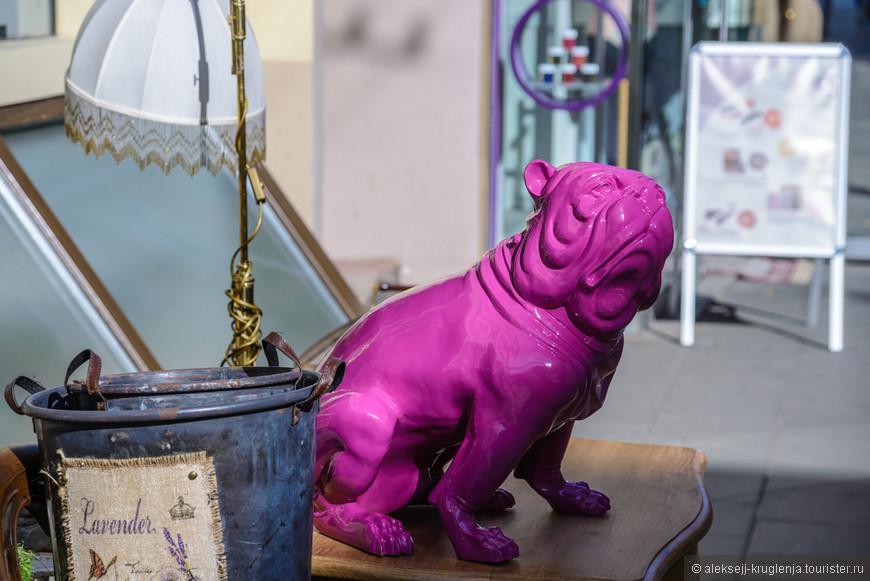 Встретить ярко-розового бульдога в сувенирной лавке.
