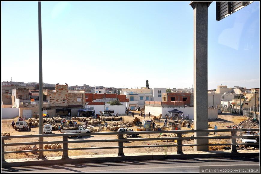 Пригороды Туниса