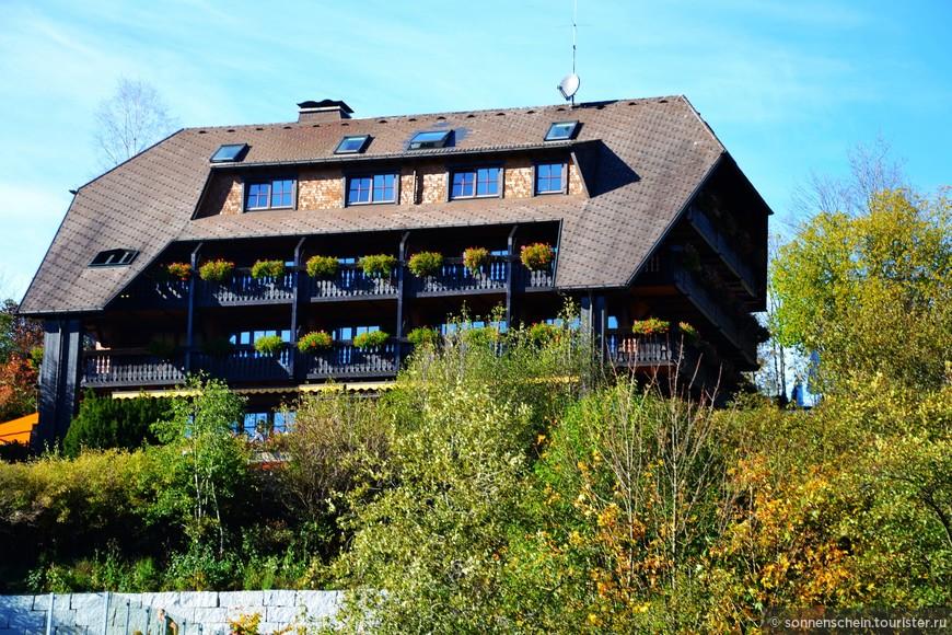 Основной отраслью  Шварцвальда является туризм. Гостиницы на любой вкус и кошелёк.