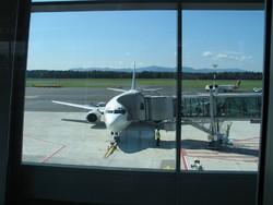 Аэропорт Любляны в апреле закроют на две недели