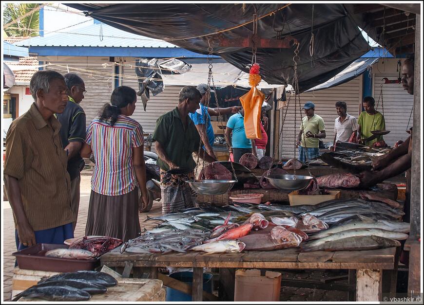Хотите свежей рыбы - пожалуйте на рыбный рынок!