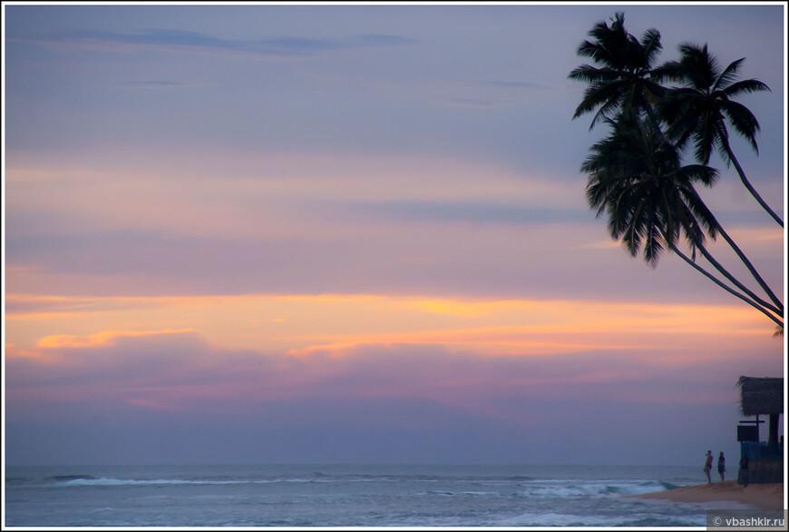 Под пальмой, в пастельных тонах.