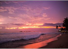 Заключительная Шри-Ланка