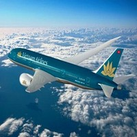 Турист из России устроил дебош на борту  «Вьетнамских авиалиний»