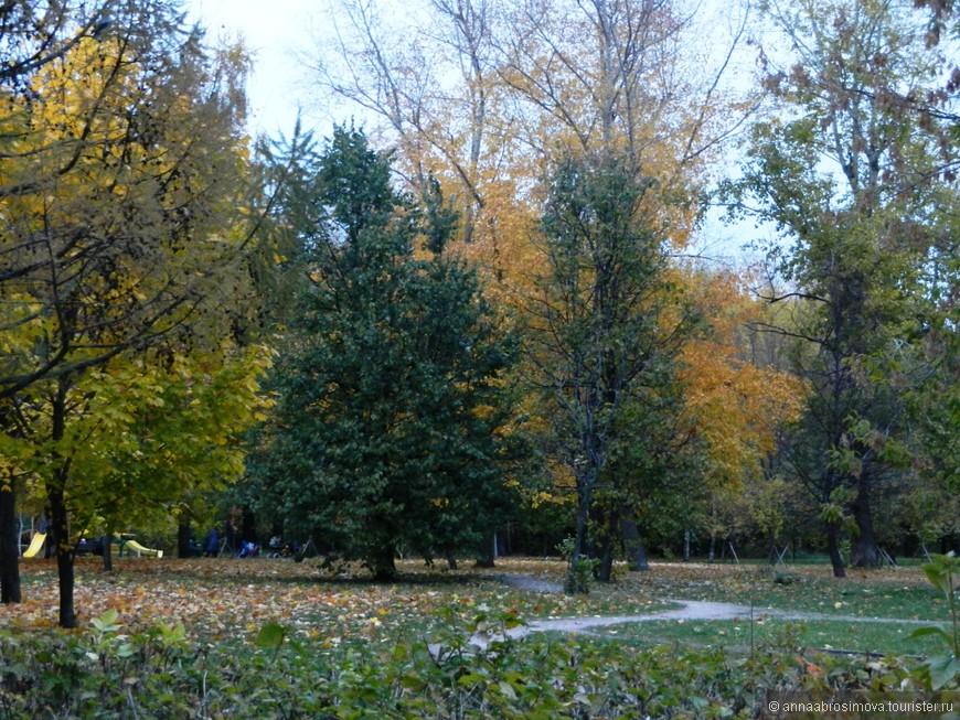 парки 2014 210.jpg
