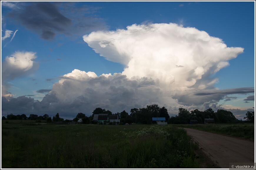 Пожалуйста, не пишите, что похоже на взрыв)) Лучше по-мирному: например, облако в штанах.))