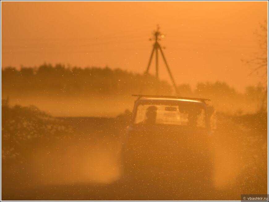 Начало июня. Пылящий одуванчиками автомобиль.