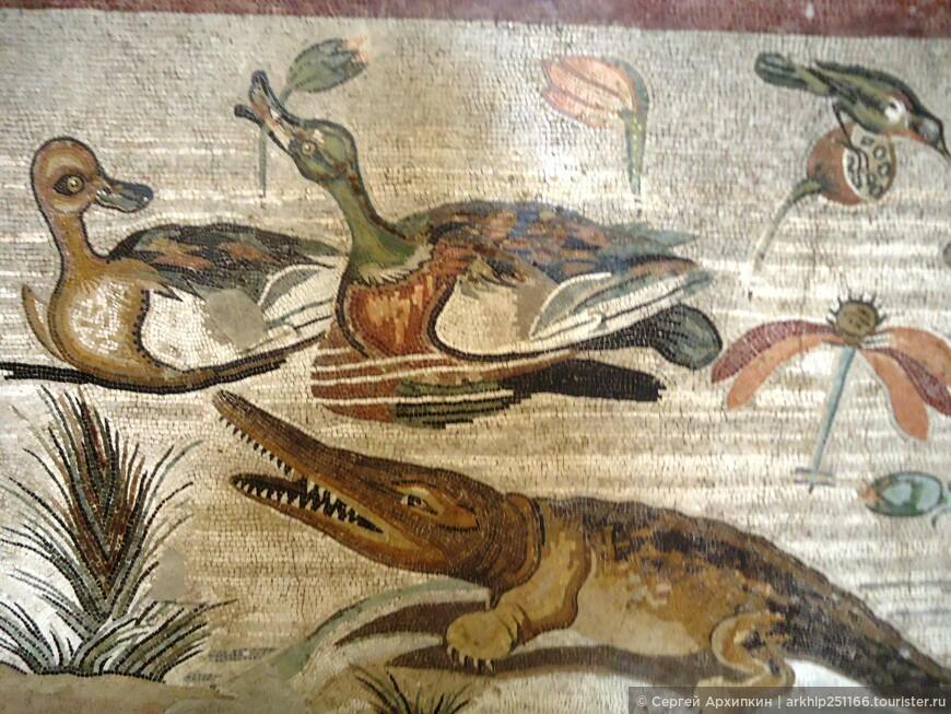 Мозаика животных  в музее Неаполя