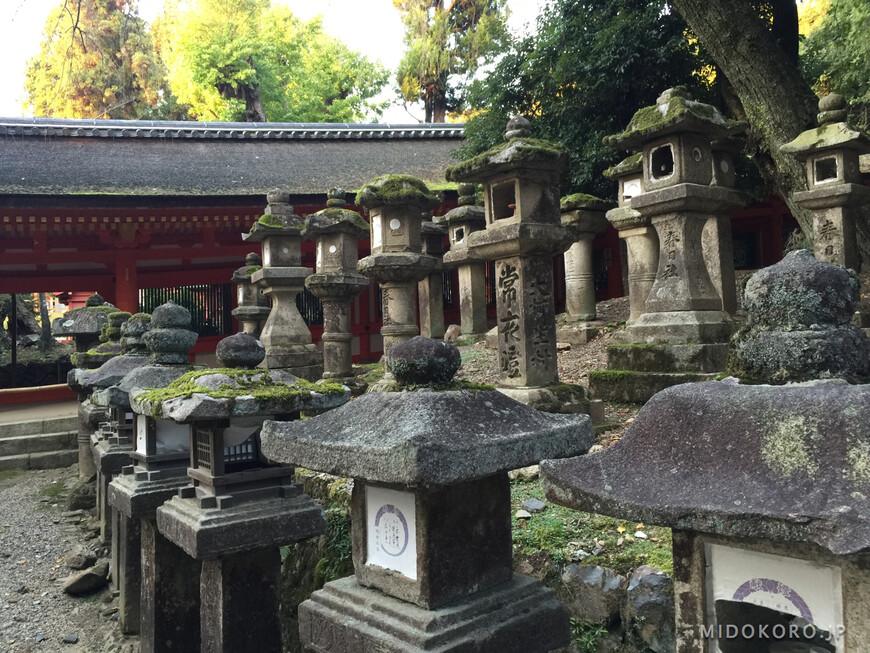 Вдоль храмовых дорожек выстроились более 2 тысяч каменных фонарей разного времени.