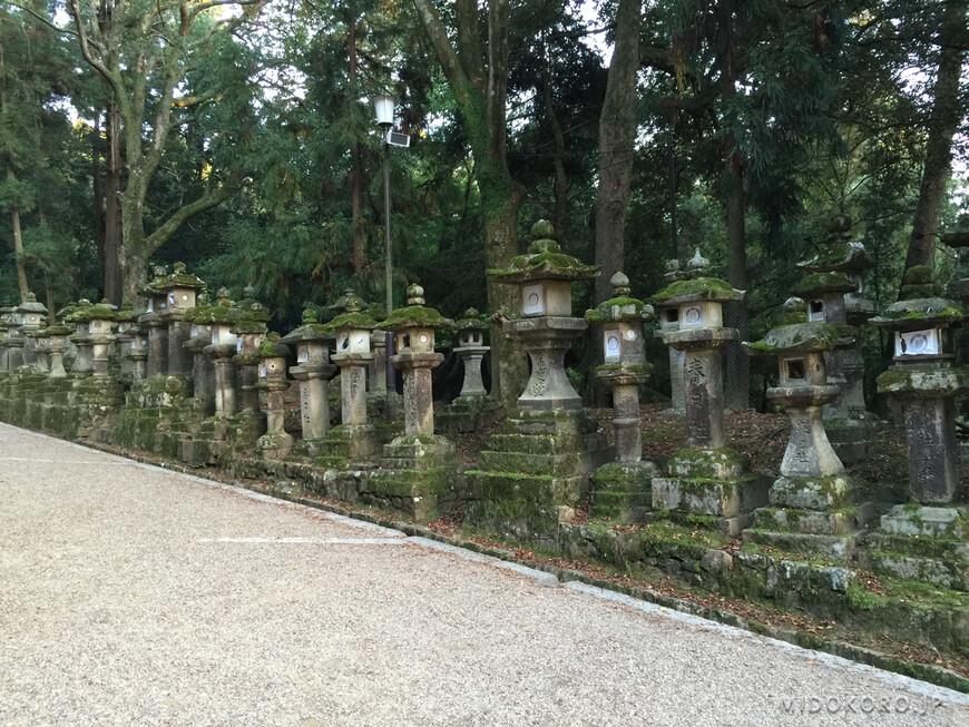 Эти фонари - знаки веры, преподнесенные паломниками. Их зажигают дважды в год - в праздники Сэцубун и О-Бон.