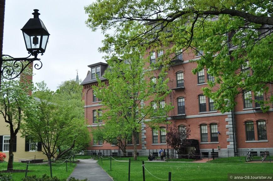 Главный кампус университета занимает 85 га, здесь находятся центральные административные здания, основные библиотеки университета, академические здания, большинство общежитий для первокурсников.