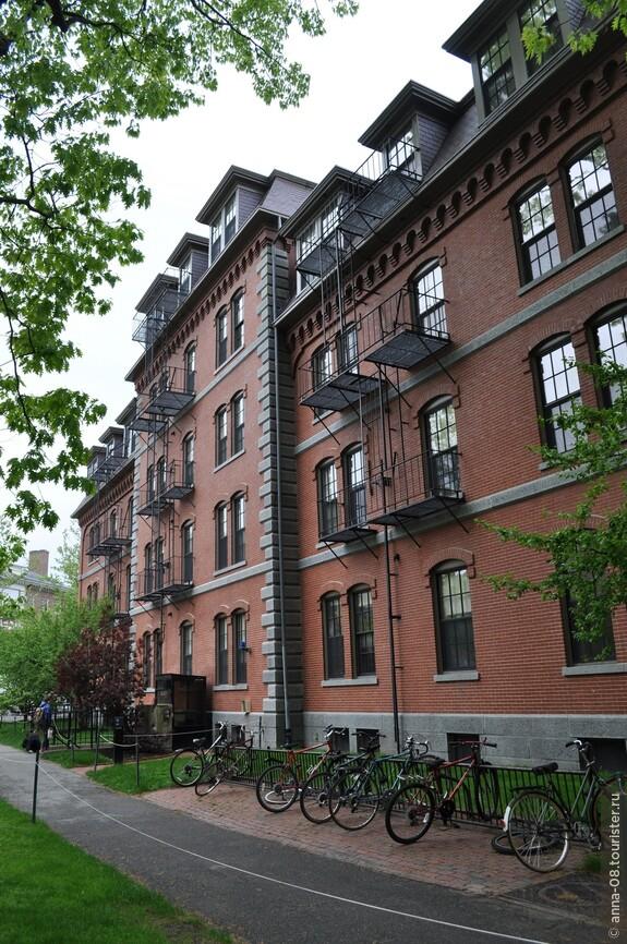 Главный цвет Гарварда – бордовый, в который окрашено большинство зданий студенческого городка.