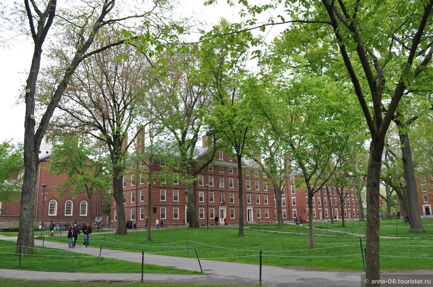 Здание с высокими трубами - Hollis Hall, одно из самых старых зданий в Гарварде, оно построено в 1763 году.