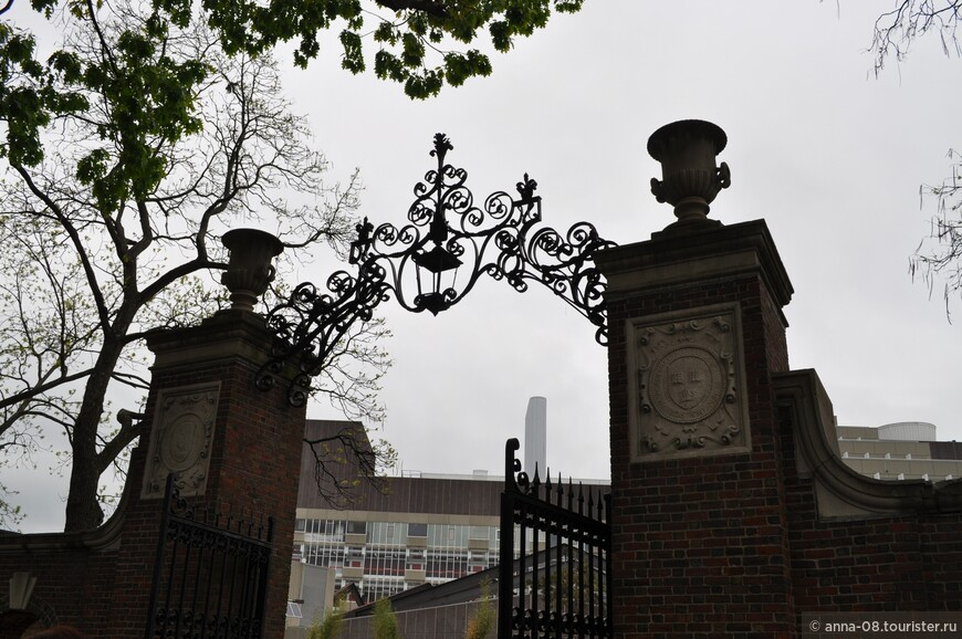 За воротами виднеется университетский  Научный центр. Мы зайдем туда.